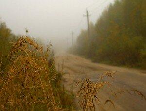 Фотосъемка в дождливую погоду