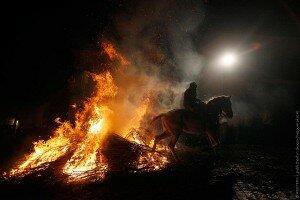 лошади в огне